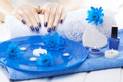 Beautiful blue manicure with chrysanthemum and towel on the white wooden table. spa Royalty Free Stock Image