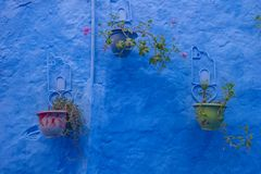 Beautiful blue medina of Chefchaouen city in Morocco, Africa. Stock Images
