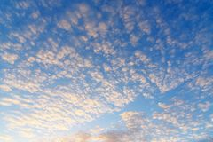 Beautiful blue morning sky. With small clouds Royalty Free Stock Photo