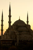 The Beautiful Blue Mosque in Istanbul, vertical Stock Photos