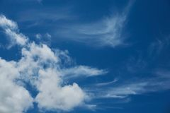 Blue sky 1b. Beautiful blue pacific sky on a sunny day Royalty Free Stock Photos