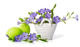 Beautiful blue periwinkle in the basket and green eggs Stock Photography
