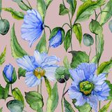 Beautiful blue poppy flowers with green leaves on gray background. Seamless floral pattern. Watercolor painting. Hand painted illustration. Fabric, wallpaper Royalty Free Stock Images