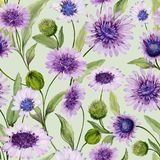 Beautiful blue and purple daisy flowers with closed buds and leaves on light green background. Seamless spring pattern. Watercolor painting. Hand painted royalty free illustration