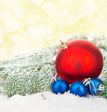 Beautiful blue and red Christmas balls on frosty fir tree. Christmas ornament. Royalty Free Stock Photos