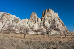 Beautiful blue sky over rocky ledges in the morning in the valley with dry trees of Cappadocia Stock Images