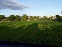 Sky line meets the farm field stock photo