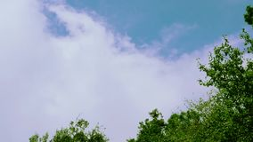 Tilt down moving clouds and blue sky. Beautiful blue sky and white clouds moving with sunlight stock footage