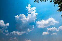 Beautiful blue sky and white cloudy sky background over the green tree in countryside landscape of Thailand. Beautiful blue sky and white cloudy background look stock images