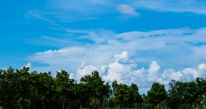 Beautiful blue sky and white cloudy background over the green trees, countryside landscape of Thailand looks fresh and bright. Amazing blue sky and white cloudy Stock Photography