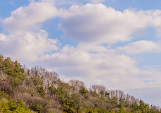 Beautiful blue sky with white puffy clouds Royalty Free Stock Images