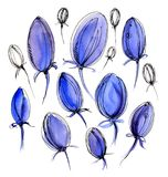 Beautiful blue tulips on a white background. Watercolor. Beautiful blue unopened tulips on a white background. Watercolor Stock Image