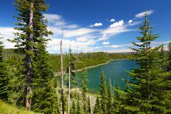 Duck Lake Yellowstone National Park Royalty Free Stock Photography