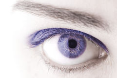 Beautiful Blue woman eye macro shot Royalty Free Stock Images