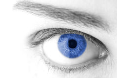 Beautiful Blue woman eye macro shot Royalty Free Stock Photos