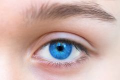 Beautiful blue woman single eye close up stock image