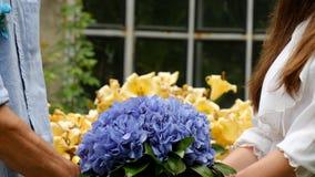 Beautiful blue-yellow wedding bouquet. In botanical garden Royalty Free Stock Image