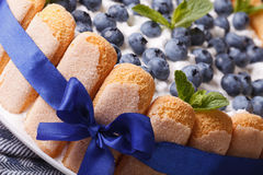 Beautiful blueberry cake with Savoiardi macro. horizontal Stock Images