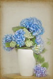 Blue hydreangea bouquet with Queen Annes Lace Stock Photography