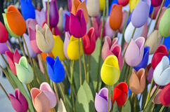 Blur colorful wooden easter tulips background Royalty Free Stock Images