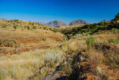 The beautiful Blyde Canyon, South Africa Royalty Free Stock Photo