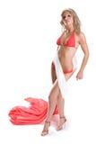Beautiful body Royalty Free Stock Photos