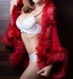 Beautiful body of woman Stock Image