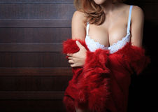 Beautiful body of woman Stock Photography