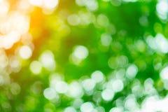 Beautiful bokeh bright green. Natural green background beautiful bokeh Stock Images