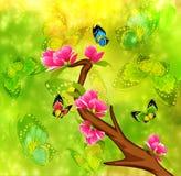 Beautiful bonsai Royalty Free Stock Photo
