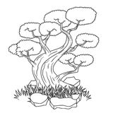 Beautiful bonsai tree isolated tattoo Stock Photography