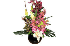Beautiful boquet of mixed flowers isolated. Beautiful boquet of mixed tropical flowers in black ceramic pot isolated on a white background stock image