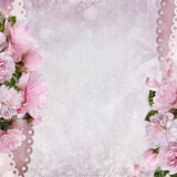 Beautiful borders of pink roses on a gentle romantic vintage background with space for text or photo Stock Photography