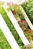 Beautiful botanic garden Royalty Free Stock Image