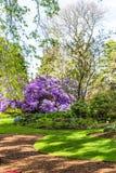 Beautiful, botanic garden in Spring. Royalty Free Stock Images