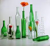 Beautiful bottles used for vases with flowers_1 Royalty Free Stock Images