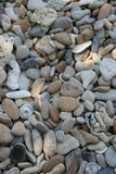 Beautiful boulder Stock Images