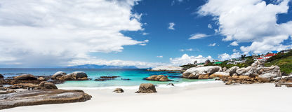 Beautiful Boulders beach landscape stock photography