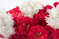 Beautiful bouquet Stock Photography