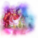 Beautiful bouquet Royalty Free Stock Photo