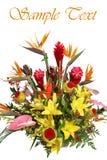 Beautiful bouquet. Stock Image
