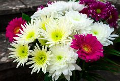 Beautiful Bouquet with asters, chrysanthemums and gerberas royalty free stock photos