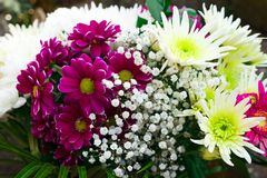 Beautiful Bouquet with asters, chrysanthemums, gypsophila and gerberas stock photos