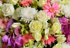 Beautiful bouquet background flowers Royalty Free Stock Photos