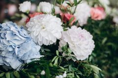 A beautiful bouquet from blue, red, white and pink flowers for decorating festive decor. royalty free stock photos