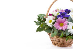Beautiful bouquet of bright flowers in basket isolated on white Royalty Free Stock Image