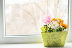 Beautiful bouquet of bright flowers on white wooden table near window royalty free stock images