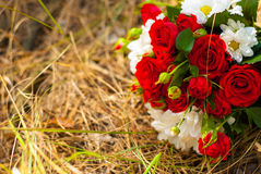 Beautiful bouquet of bright red roses and white daisies. On grass background Stock Photo