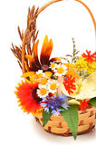 Beautiful bouquet of bright wildflowers in basket Royalty Free Stock Photos
