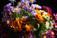 Beautiful bouquet of bright wildflowers stock images